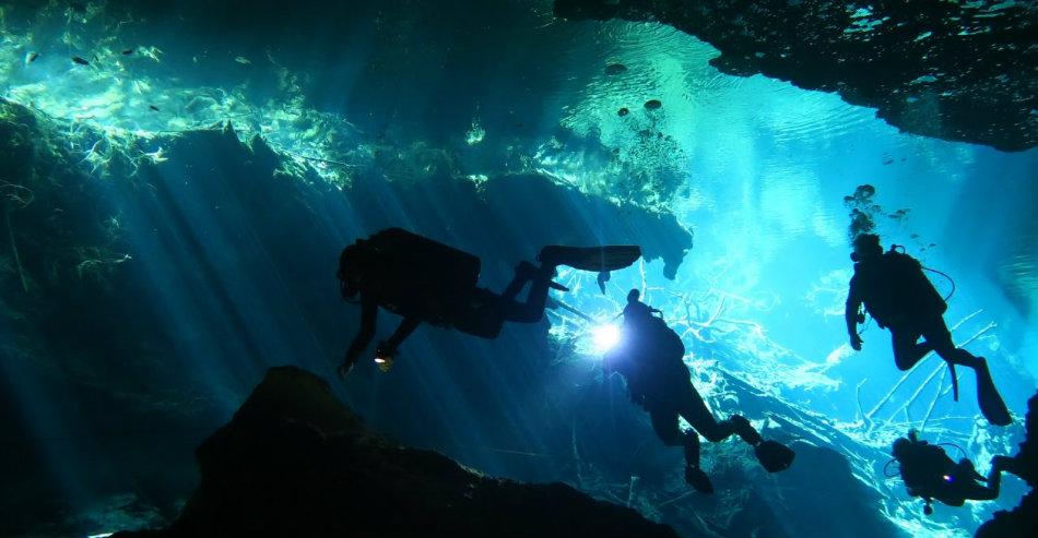 Descoperire in adancul oceanului
