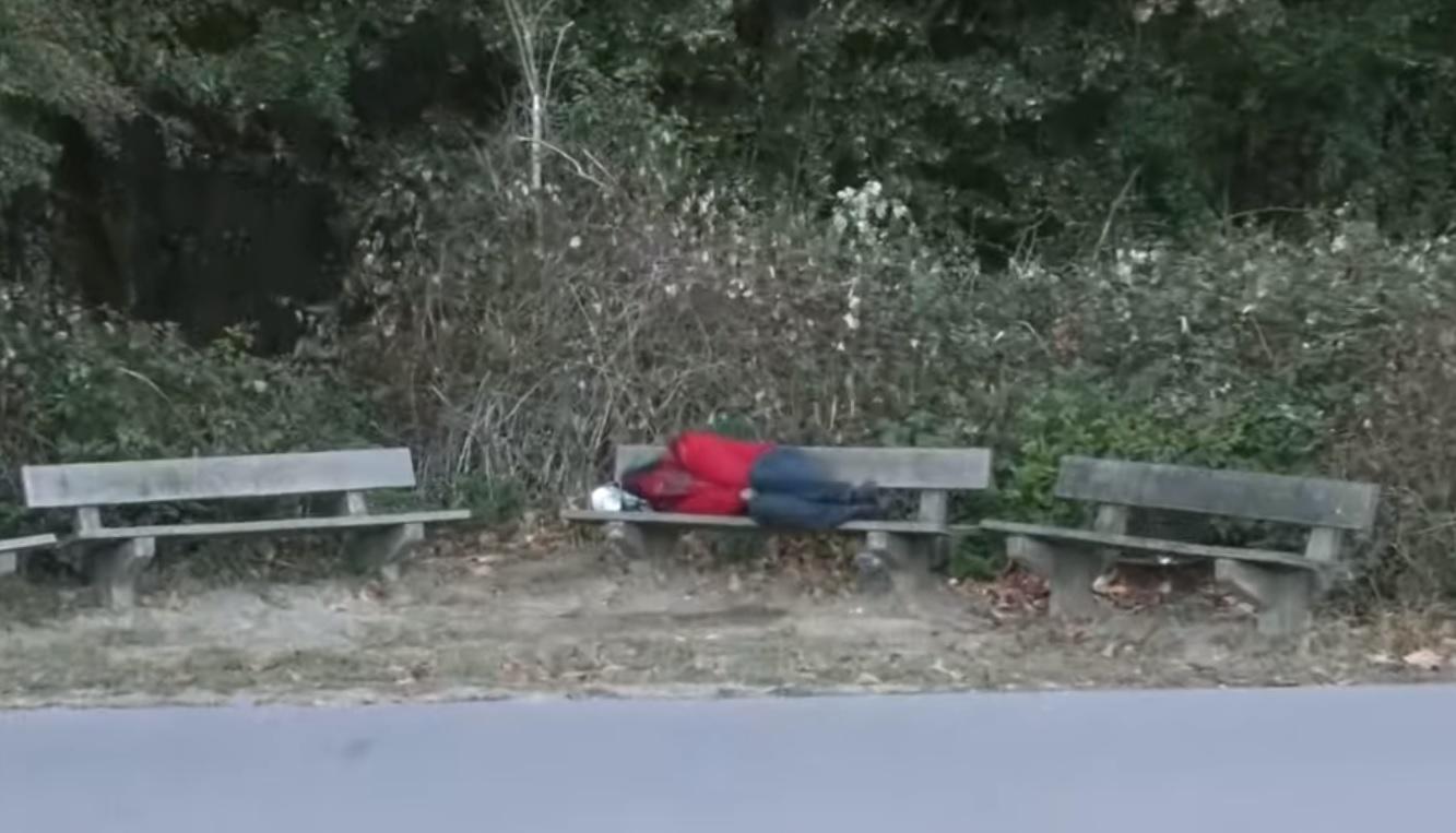 Romanii, sclavii germanilor! Un barbat a fost obligat de angajator sa doarma pe banca, in padure