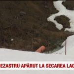 Dezastru ecologic in Lacul Colibita