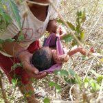 Nou-nascut lasat sa moara intr-un musuroi de insecte
