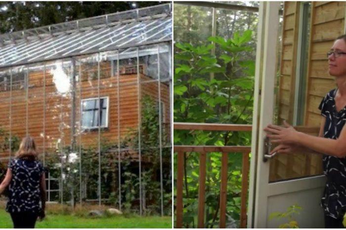 Si-au construit o sera in jurul casei, dintr-un motiv incredibil! Ce se intampla in interiorul locuintei, intregul an! VIDEO