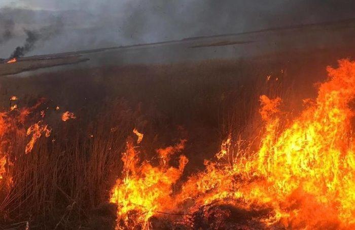 Incendiu de proportii in Olt! A fost un act intentionat