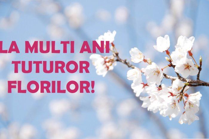 Mesaje de Florii cu imagini. Cele mai frumoase urari