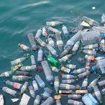 Cat plastic mancam intr-o singura saptamana, fara sa stim